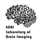 lobi brain imaging obrazowanie mózgu